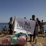 Sinai Divers