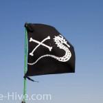 A pirate seahorse?