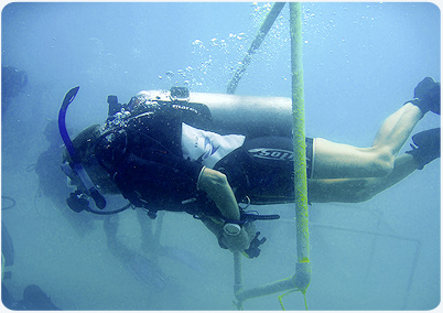 buoyancy training